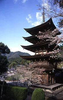 瑠璃光寺五重塔(国宝)