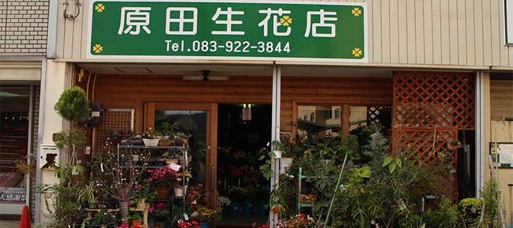 原田生花店 ハラダセイカテン